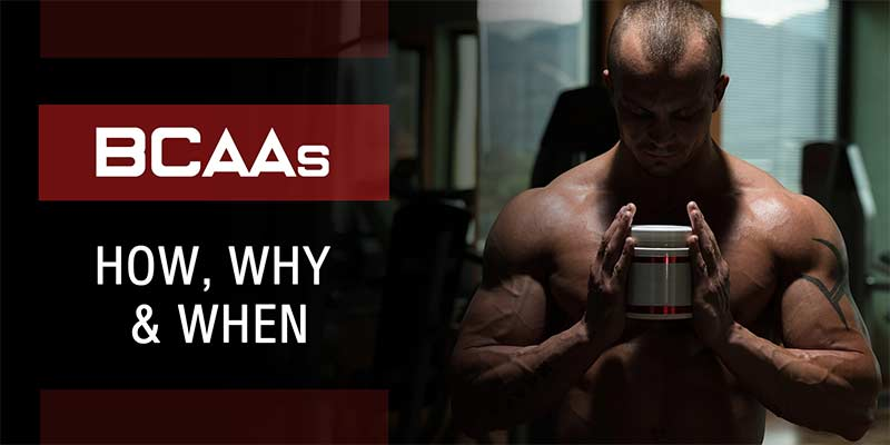 ultimate-muscle-gainer-banner