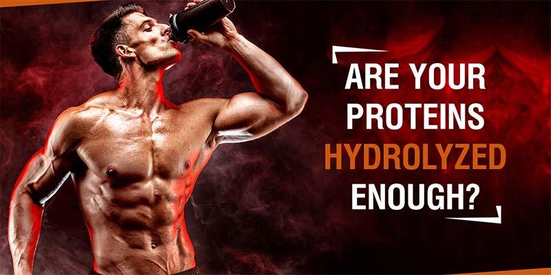 hydrolyzed-protein-banner