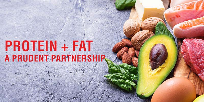 protein-fat-partnership-banner-image